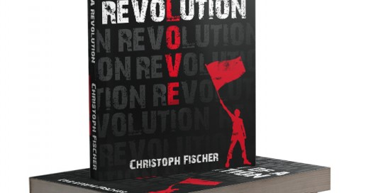 n search of a revolution book cover
