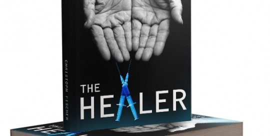 the healer book cover